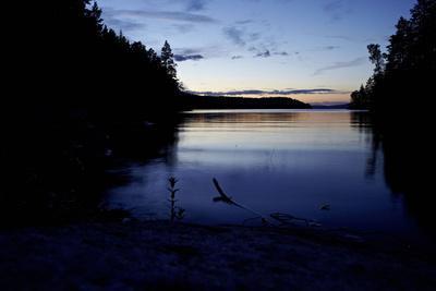 https://imgc.allpostersimages.com/img/posters/dusk-stora-le-lake-dalsland-goetaland-sweden_u-L-Q1EXSAU0.jpg?artPerspective=n