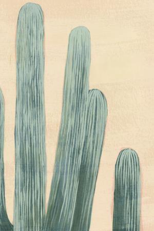 Dusty Cacti II