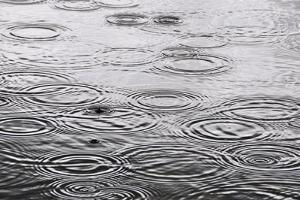 Raindrops On The Water Surface by Dutourdumonde
