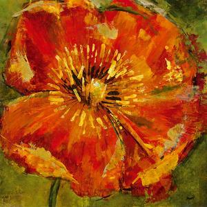Petals III by Dysart