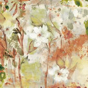 Vivid Vision I - Terra by Dysart