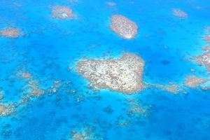 Natural Heart Shaped Coral Island in Great Barrier Reef near Cairns, Australia Seen from Above by dzain