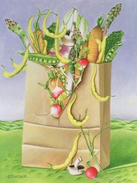 Paper Bag with Vegetables, 1992 by E.B. Watts