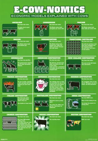 E-Cow-Nomics Economic Models Explained with Cows Funny Poster Print