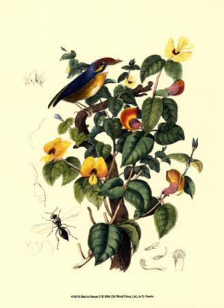 Bird in Nature II