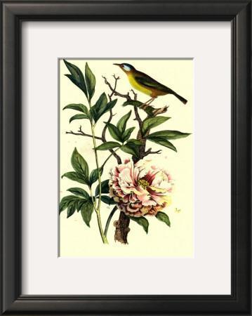 Bird in Nature III