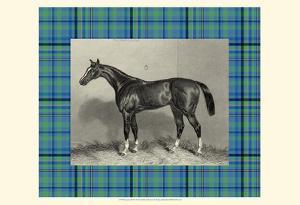 Equestrian Plaid IV by E. Hacker