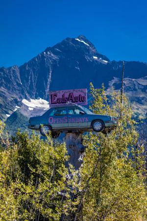 Eads Auto, Seward Alaska - a car in the trees under a large mountain