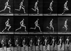 Athlete Running, 1897 by Eadweard Muybridge