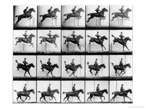 """Man and Horse Jumping, from """"Animals in Motion"""", London, Published 1907 by Eadweard Muybridge"""