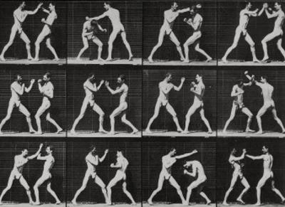 Phases in a Boxing Match