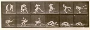 Two Men Wrestling, Plate 347 from 'Animal Locomotion', 1887 (B/W Photo) by Eadweard Muybridge