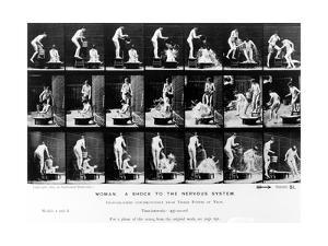 Woman. a Shock to the Nervous System, 1887, Illustration from 'The Human Figure in Motion' by… by Eadweard Muybridge