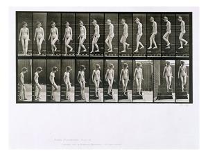 Woman Descending Steps, Plate 137 from 'Animal Locomotion', 1887 (B/W Photo) by Eadweard Muybridge