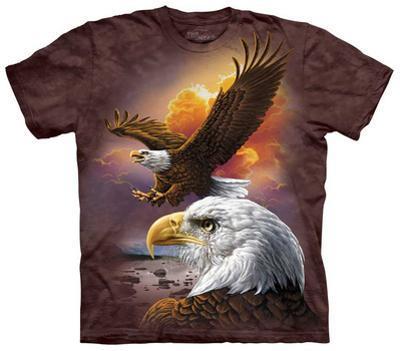 Eagle & Clouds
