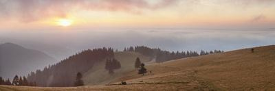 https://imgc.allpostersimages.com/img/posters/early-morning-fog-and-sunrise-belchen-mountain-black-forest-baden-wurttemberg-germany-europe_u-L-PQ8U250.jpg?p=0