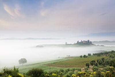 https://imgc.allpostersimages.com/img/posters/early-morning-fog-at-the-farmhouse-belvedere_u-L-PNFVVD0.jpg?artPerspective=n