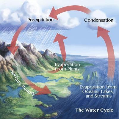 https://imgc.allpostersimages.com/img/posters/earth-s-water-cycle_u-L-Q1HOQ140.jpg?artPerspective=n