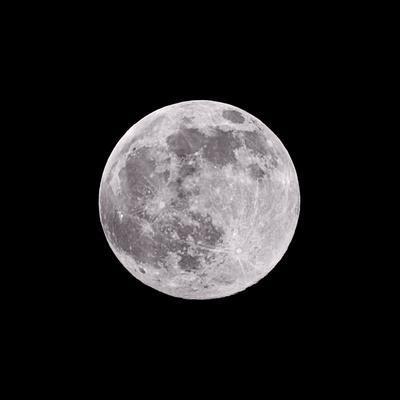 https://imgc.allpostersimages.com/img/posters/earths-moon_u-L-Q1BDYIO0.jpg?artPerspective=n