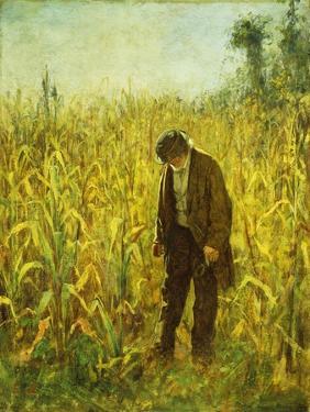 Man in a Cornfield by Eastman Johnson