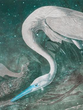 White Heron - Space by Eccentric Accents