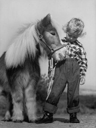 Child Standing Beside a Miniature Horse, Showing Size Comparison by Ed Clark