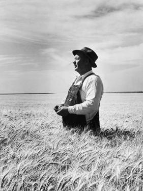 Farmer Posing in His Wheat Field by Ed Clark