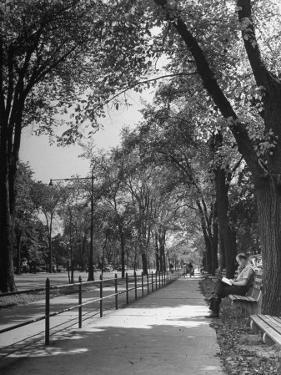 People Enjoying Sunny Day at Park on Ocean Parkway by Ed Clark