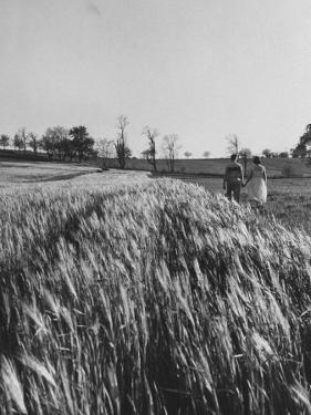 Young Couple Walking by a Grain Field by Ed Clark