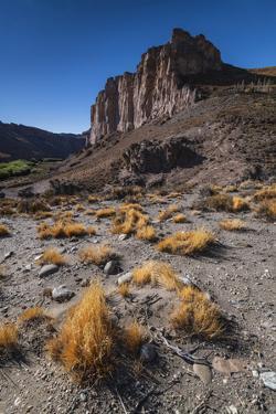 Rio Pinturas Canyon, Cave of the Hands, Patagonia, Province of Santa Cruz, Argentina by Ed Rhodes