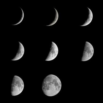 Moon by Edelweiss81