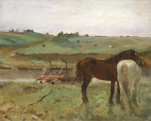 Horses in a Meadow, 1871 by Edgar Degas