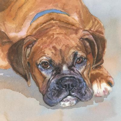 Baillie Boxer by Edie Fagan