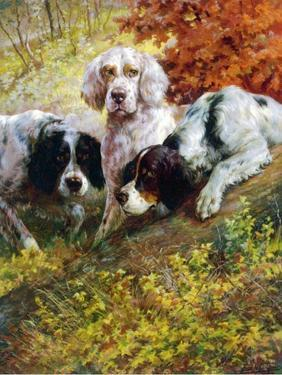 Setters by Edmund Henry Osthaus