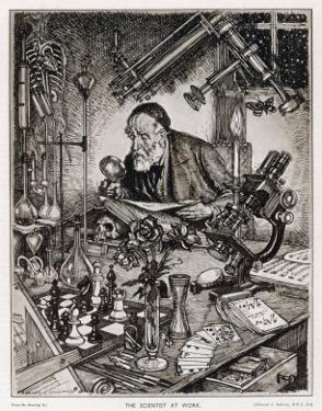 The Ideal Scientist by Edmund J. Sullivan