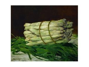 A bunch of asparagus.Oil on canvas, 1880 44 x 54 cm by Edouard Manet