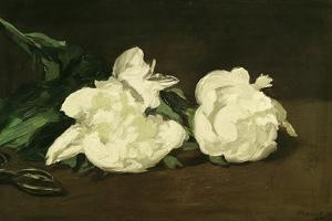 Branch of White Peonies and Secateurs, 1864 by Edouard Manet