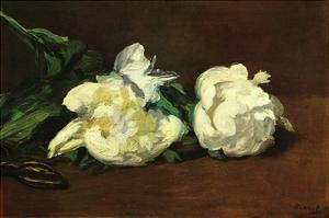 Still Life, White Peony by Edouard Manet