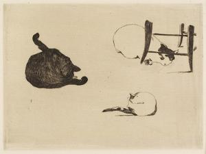 The Cats, 1869 by Edouard Manet