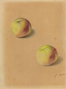 Two Apples, 1880 by Edouard Manet