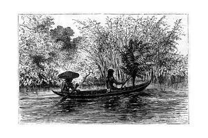 Dugout in the Essequibo River, Guyana, 19th Century by Edouard Riou