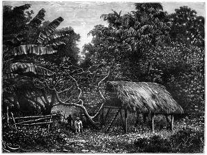 Guyana, South America, 19th Century by Edouard Riou