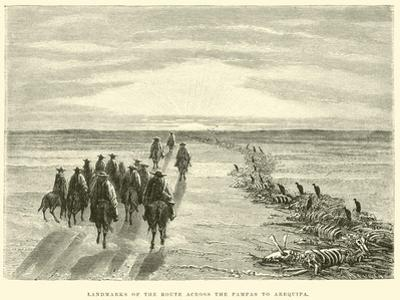 Landmarks of the Route across the Pampas to Arequipa by Édouard Riou