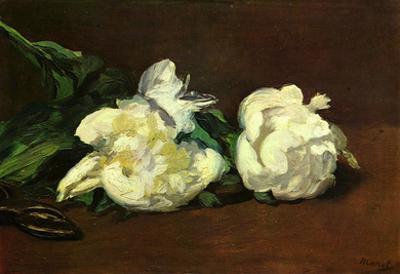 Edourard Manet Still Life White Peony Art Print Poster