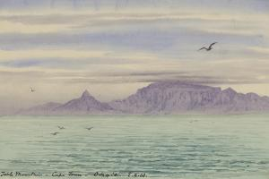 Table Mountain, Cape Town, 4 Oct, 1901 by Edward Adrian Wilson