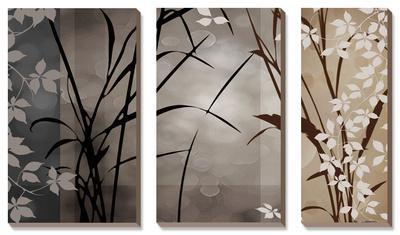 Silver Whispers II by Edward Aparicio