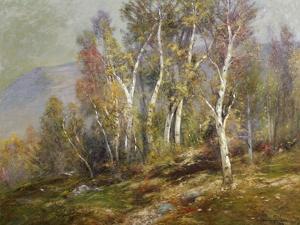 Autumn Birches in the Catskills by Edward B. Gay