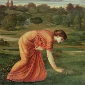 The March Marigold, C.1870 by Edward Burne-Jones