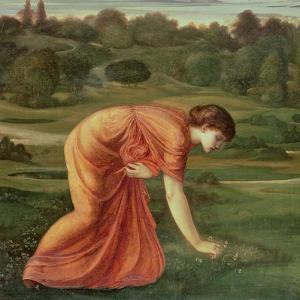 The March Marigold, C.1870 by Edward Burne-Jones