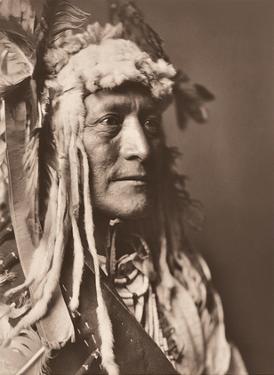 Hidatsa Man Wearing White Duck Headdress - North American Indian by Edward Curtis